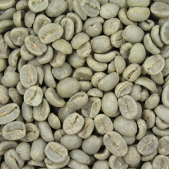 green_coffee_beans_image
