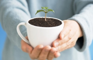 2014_Coffee Mug with plant