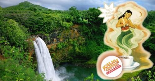 2014_Kauai Coffee pic with logo