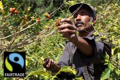 2015_Fair Trade Coffee Image
