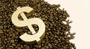 dollar-sign-coffee-beans2