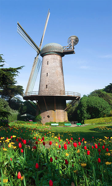 murphy-windmill