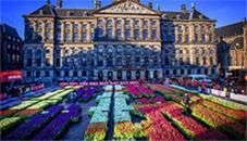 tulip-season