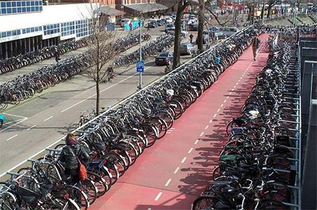 bikes-rows