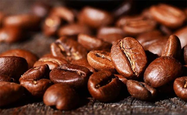 bean-closeup